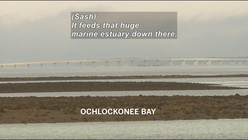 Fingers of land with inlets of water. A large flat bridge in the background. Caption: Ochlockonee Bay. (Sash) It feeds that huge marine estuary down there,