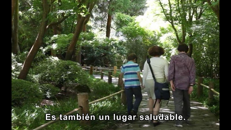 Three people walking on a rock lined path through trees. Spanish captions.