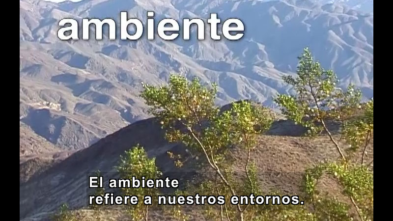 Still image from Environmental Problems and Solutions (Spanish)