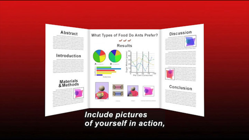 Diagrams of what food ants may prefer. Caption: Include pictures of yourself in action,