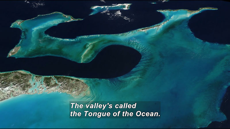 Aerial view of a string of islands. Light bluish green water surrounds the islands. Caption: The valley's called the Tongue of the Ocean.