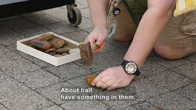 Person using a wooden mallet to break open a stone. Caption: About half have something in them.