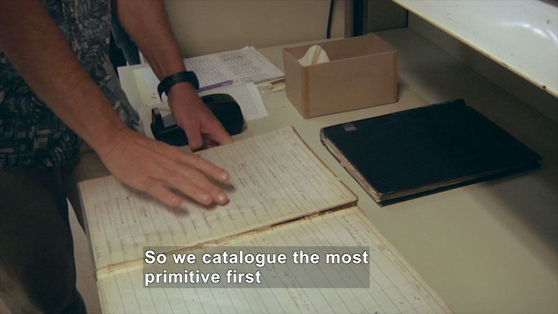 Person gesturing above an open book. The book has a broken spine and faded, handwritten text. Caption: So we catalogue the most primitive first