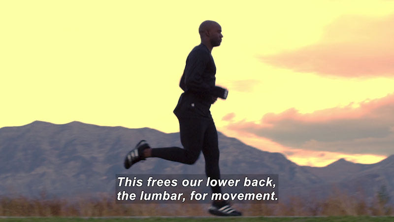 Person running. Caption: This frees our lower back, the lumbar, for movement.