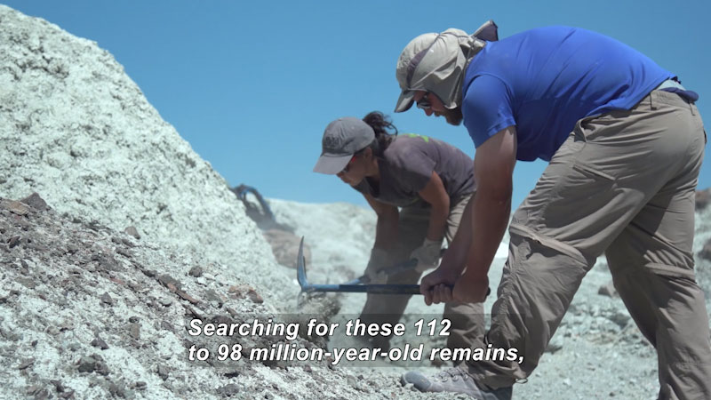 Two people with tools in their hands in a desert-like setting, digging in a mound of earth. Caption: Searching for these 112 to 98 million-year-old remains,