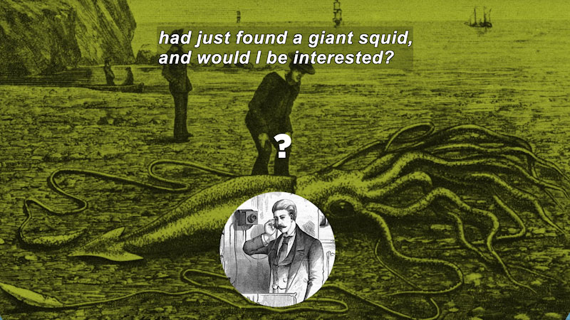 Illustration of a person standing on the shoreline next to a squid with a body larger than the person is tall. Caption: had just found a giant squid, and would I be interested?