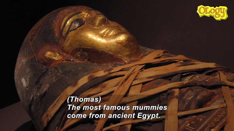 Still image from: Ask a Scientist About Mummies