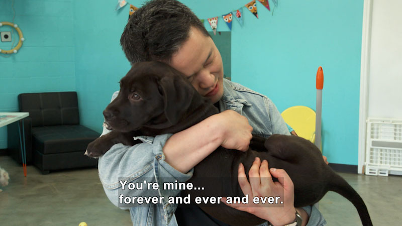 Still image from Naturally with Danny Seo: The Dog Café