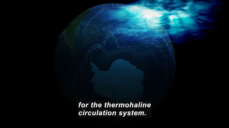 View of Earth from space. Caption: for the thermohaline circulation system.