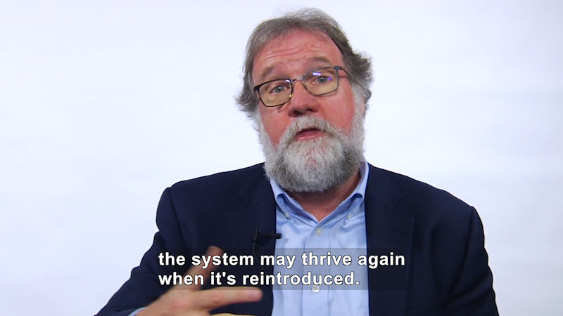 Man, with glasses in a suit jacket and button up shirt. Caption: the system may thrive again when it's reintroduced.