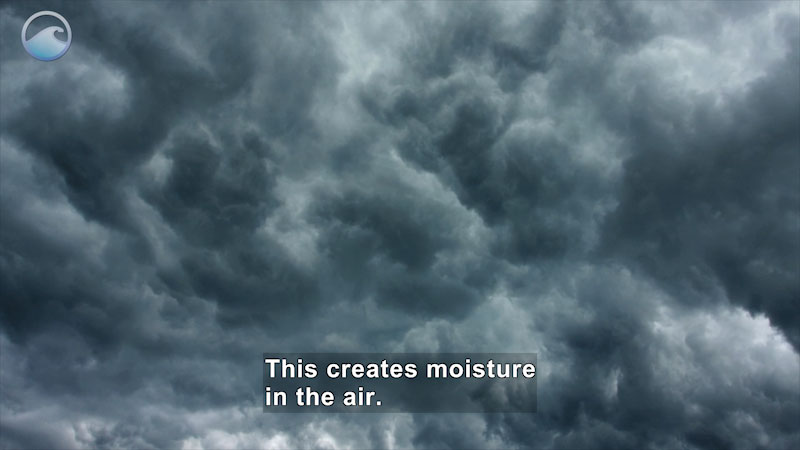 Ominous gray clouds in the sky. Caption: This creates moisture in the air.