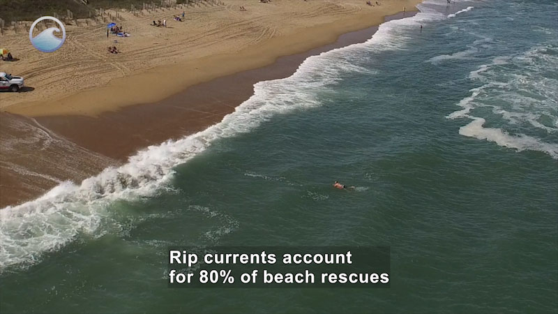 Aerial view of a shoreline with a person body surfing and more people on the beach. Caption: rip currents account for 80% of beach rescues