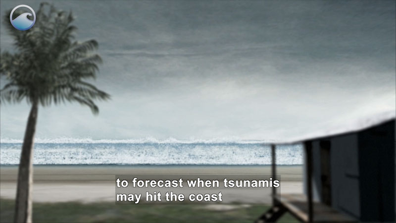 Palm tree and house out of focus in foreground, wall of water from the ocean in focus in the background. Caption: to forecast when tsunamis may hit the coast