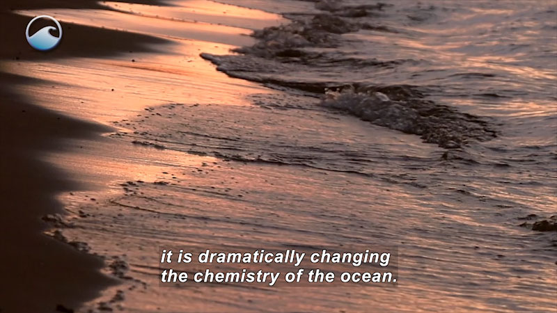 Close up of waves on the shore. Caption: it is dramatically changing the chemistry of the ocean.
