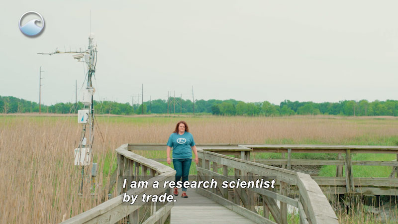 A woman walking on a board walk. Caption: I am a research scientist by trade.