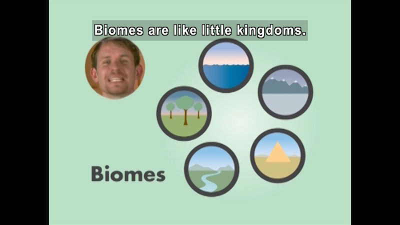 Trees, water, mountains, desert, and plain with river. Caption: Biomes are like little kingdoms.