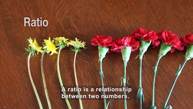 Still image from: Ratios and Rates