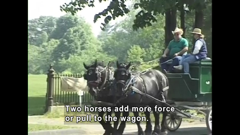 People riding on a wagon pulled by two horses. Caption: Two horses add more force or pull the wagon.