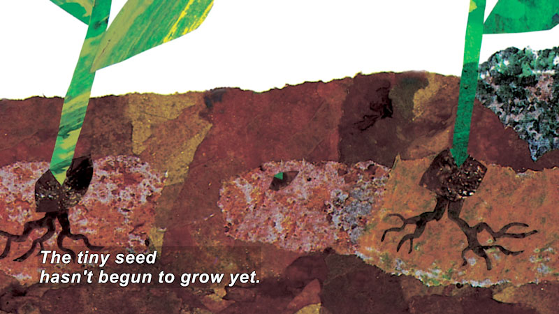 Artwork of a seed planted in the ground. Caption: The tiny seed hasn't begun to grow yet.