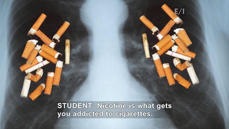 Still image from: Teen Kids News (Episode 1624)