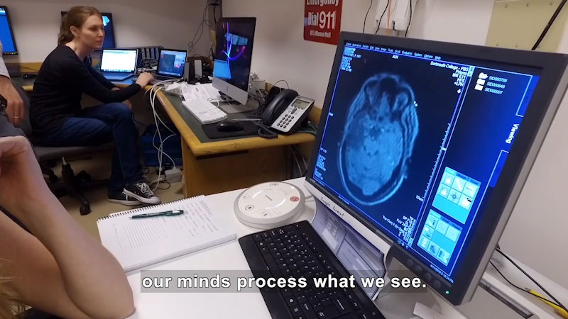 A team of psychologists monitors a human brain. Caption: our minds process what we see.