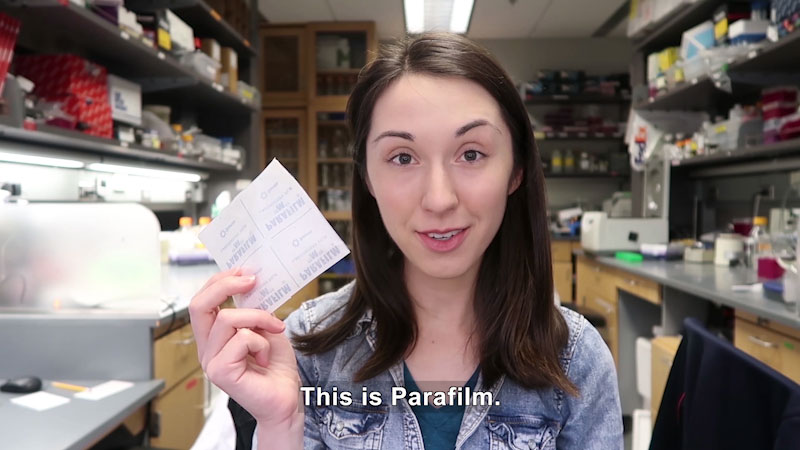 Alex Dainis holds a parafilm in the hand. Caption: This is parafilm.