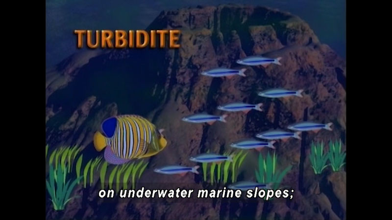 An illustration depicts a school of fish swimming past an underwater crater. On screen text, turbidite. Caption: on underwater marine slopes,