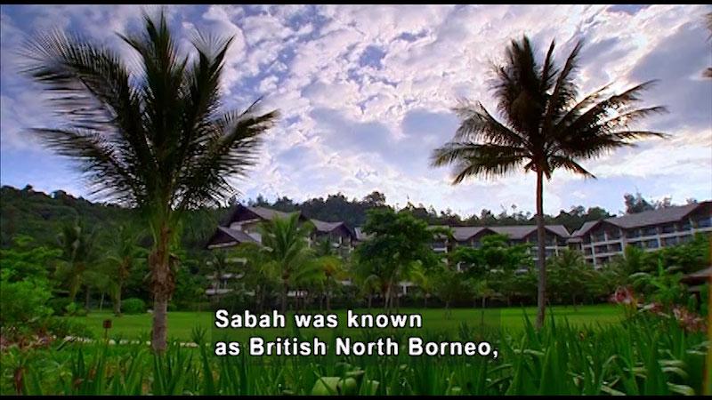 Still image from: Around the World: Asia--Borneo