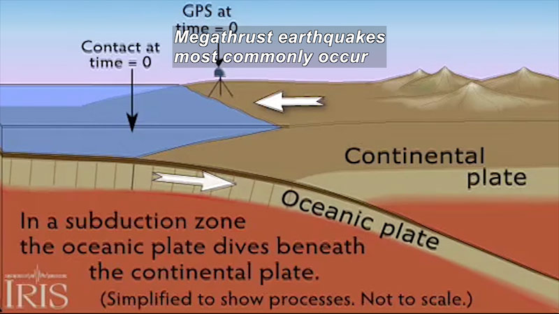 A subduction zone. In a subduction zone oceanic plate dives beneath the continental plate. Contact at time equal zero. G P S at time equals zero. Caption: Megathrust earthquakes most commonly occur
