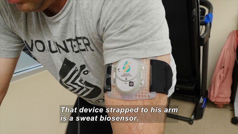 A device strapped on a man's hand. Caption: That device strapped to his arm is a sweat biosensor.