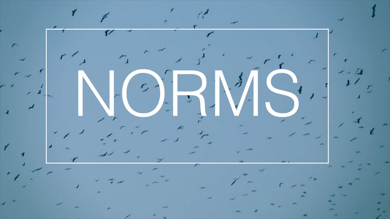 Still image from: Norms