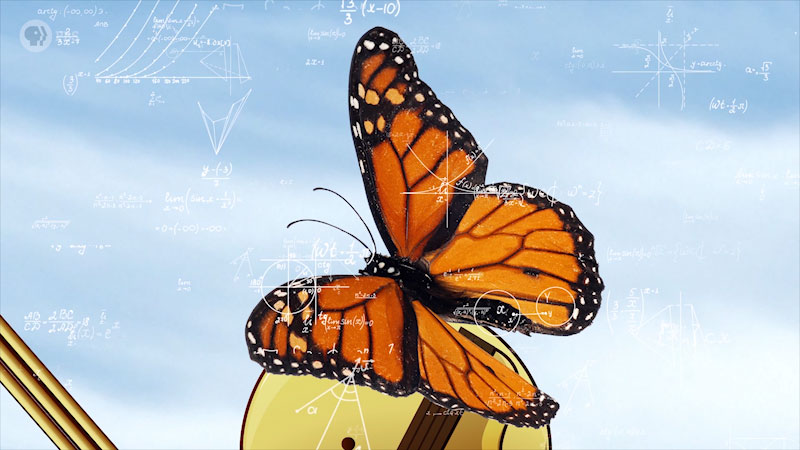 Different math equations and graphs are drawn, with a butterfly as the backdrop.