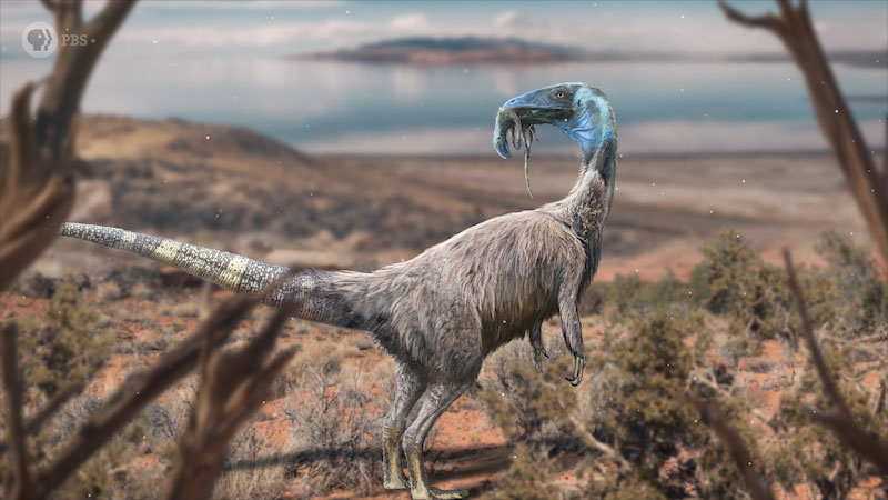 An illustration depicts the dinosaur, Coelophysis, with new born Coelophysis in between its beak.