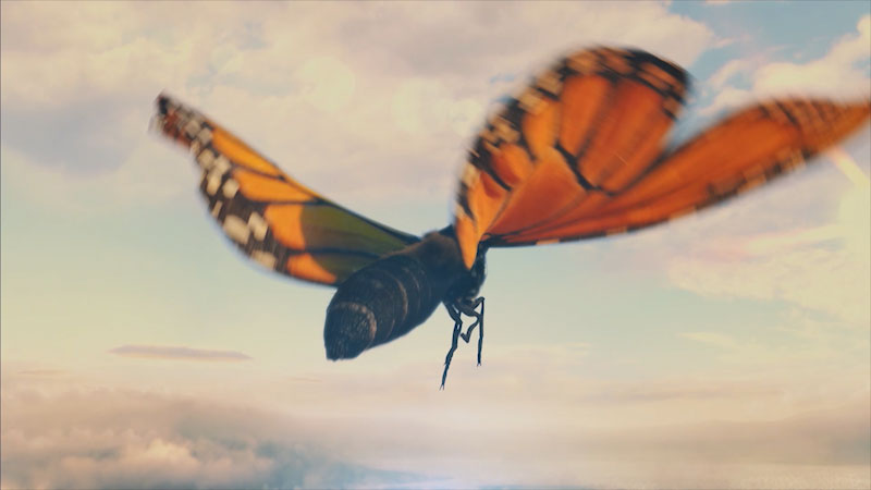 A butterfly flying in the sky.
