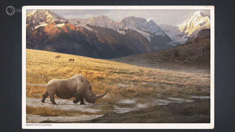 A Wooly Rhino is grazing on the slope of a mountain.
