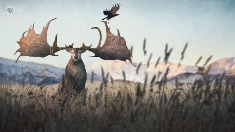 A giant deer roams a grassland.
