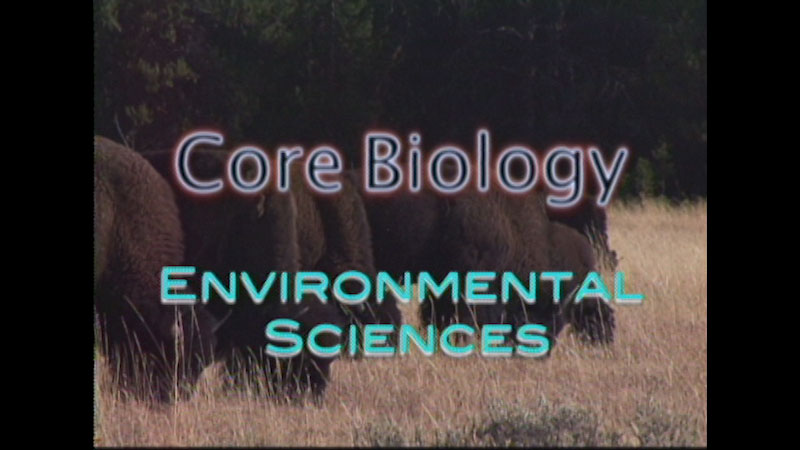 Still image from: Core Biology: Environmental Sciences