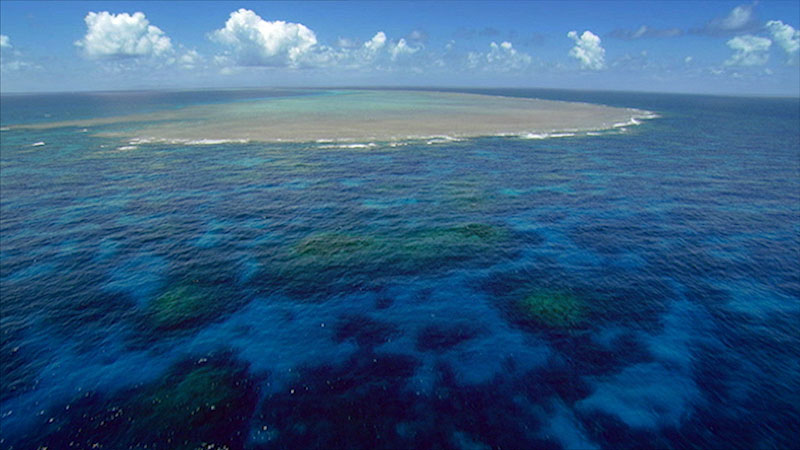 A photo depicts a shallow coastal region teaming with colonies of corals