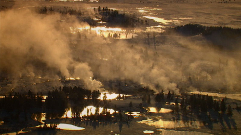 A photo depicts a region with a large number of trees and small water pockets. Fog rises from the earth.