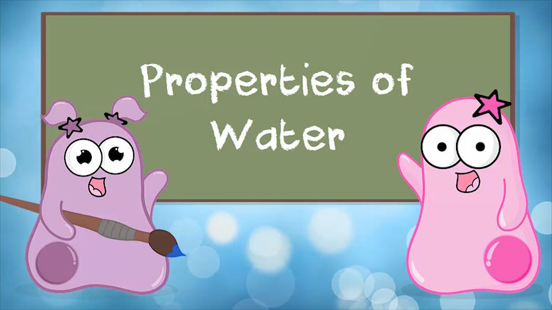 Still image from The Amoeba Sisters: Properties of Water