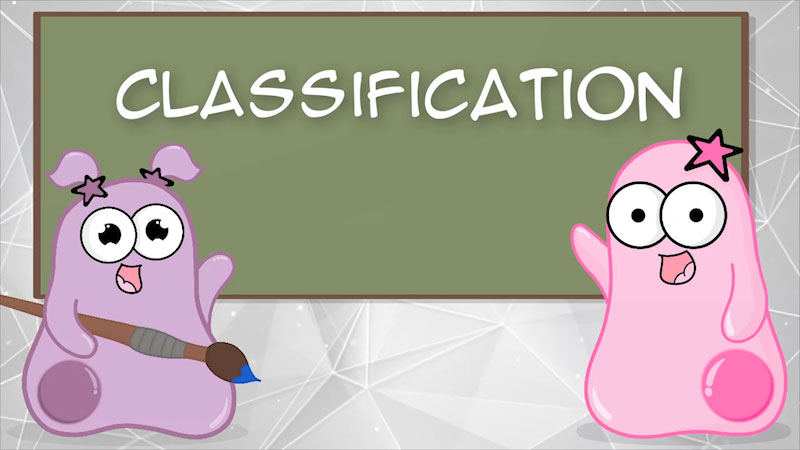 Still image from The Amoeba Sisters: Classification