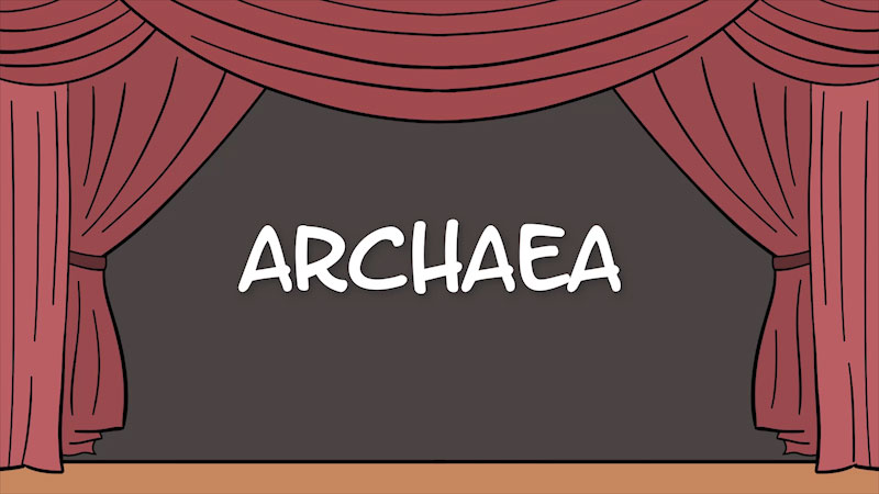 Still image from The Amoeba Sisters: Archaea