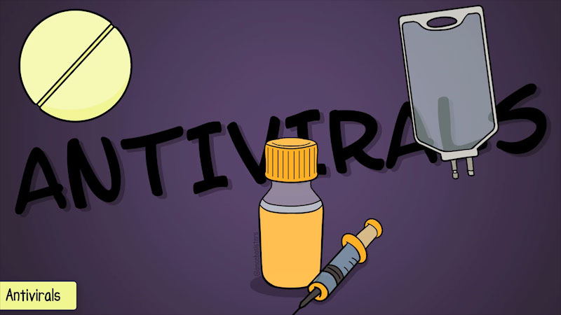 Still image from The Amoeba Sisters: Antibiotics, Antivirals, and Vaccines