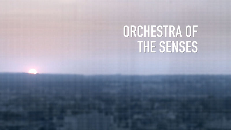 Blurry city in background. Orchestra of the senses.