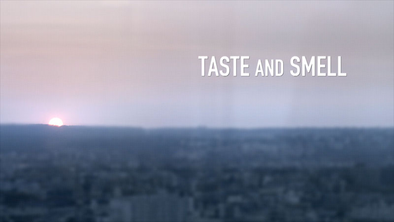 Blurry city in background. Taste and Smell.