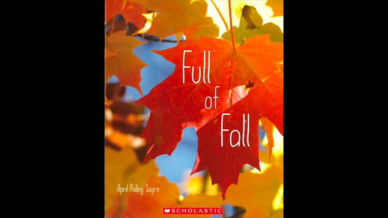 Still image from: Full of Fall