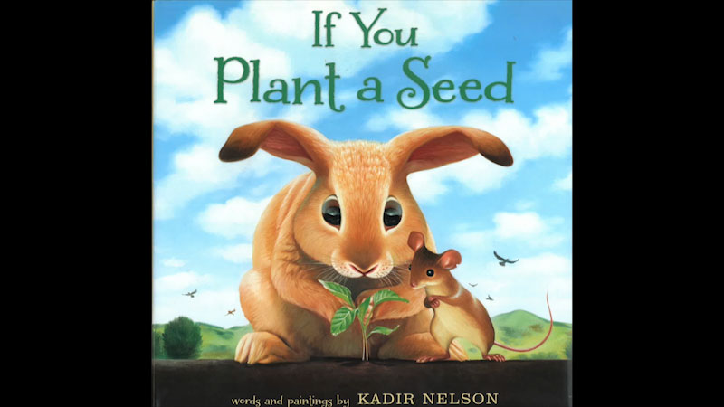 Still image from: If You Plant a Seed