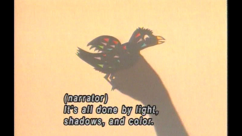 Shadow of an arm ending in a colorful bird. Caption: (narrator) It's all done by light, shadows, and color.