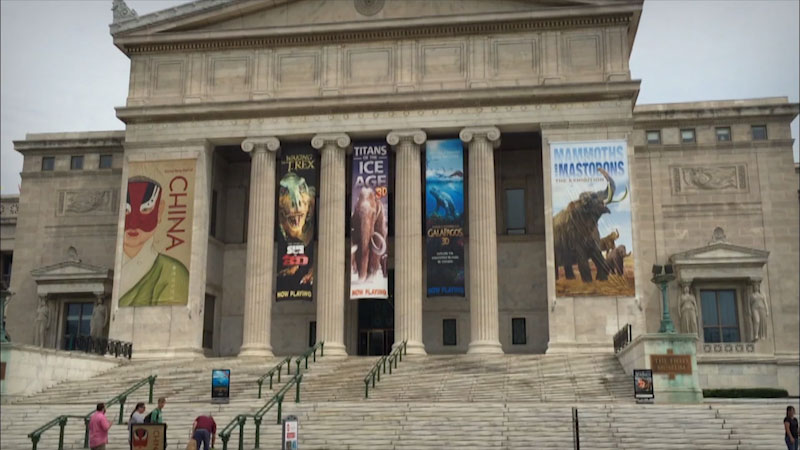 Still image from Museum Access: The Field Museum of Natural History