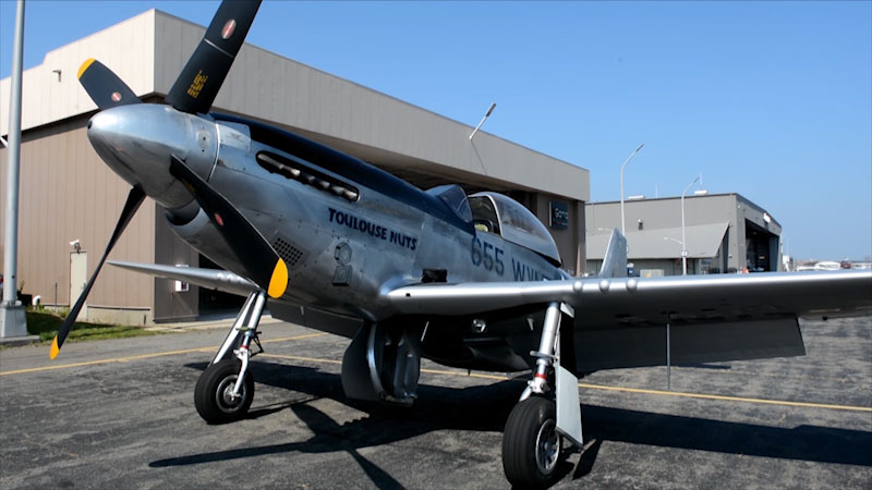 Still image from: Museum Access: Wings of Freedom WWII Aircraft